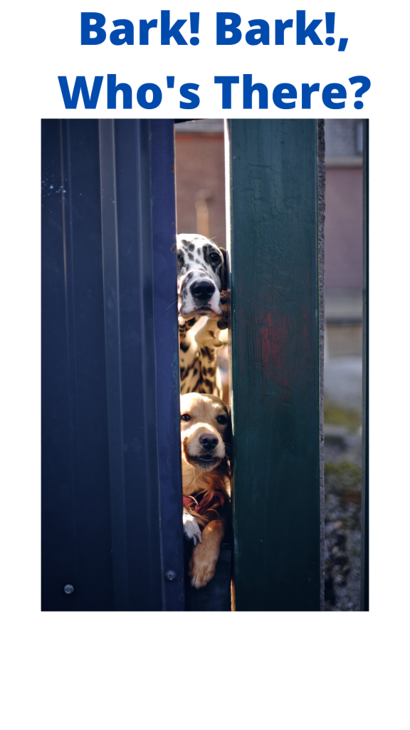 Text: Bark! Bark! Who's There? Image: two dogs peering through an open door