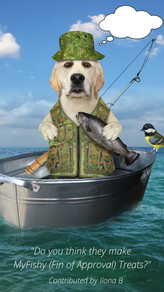 caption contest image of a dog in a boat